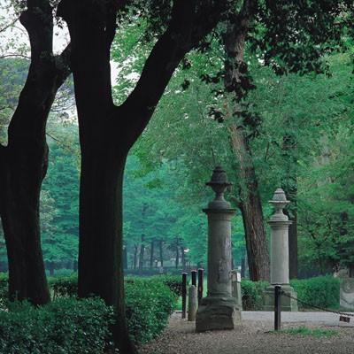 parco_delle_cascine
